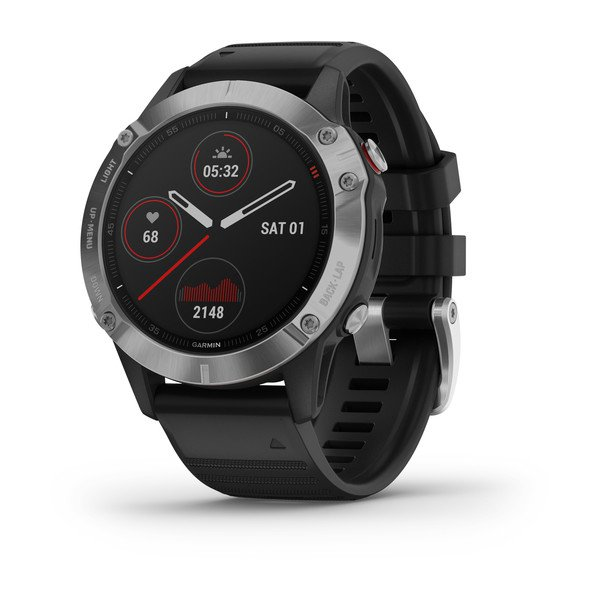 Часы Garmin Fenix 6 Silver with Black Band