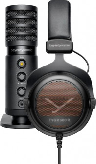 Наушники Beyerdynamic Team Tygr Black + микрофон (285715)