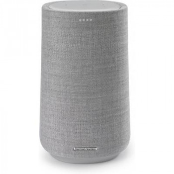 Акустическая система Harman Kardon Citation 100 MKII Grey (HKCITA100MKIIGRYEU)