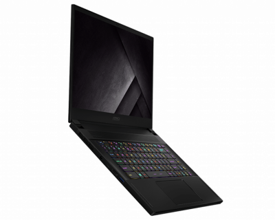 Ноутбук MSI GS66 10SGS Stealth (GS66 10SGS-036US)